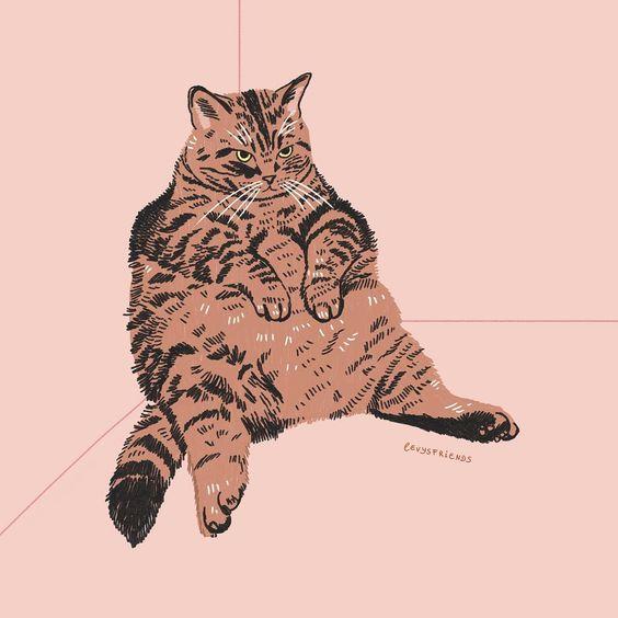 Online dating για γάτες